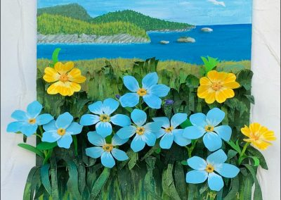 Summer Forget-Me-Nots