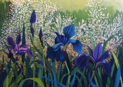 Irises In My Garden