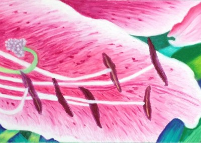 Lilly Magnified